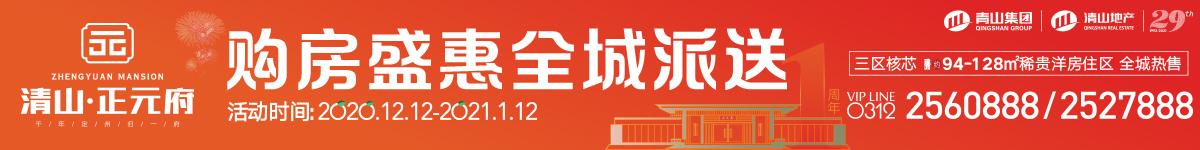 清山·正元府(1#11#在售)